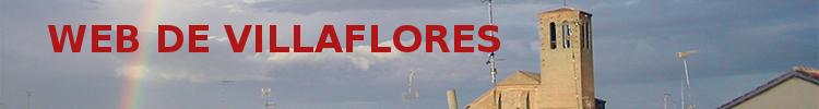 Web de la localidad de Villaflores